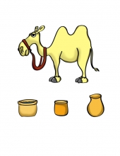 Camel Accessories