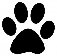 Cat print jpg