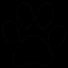 Cat print png