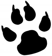 Dog print jpg