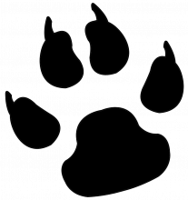 Dog print png