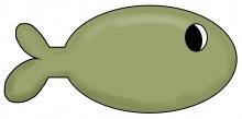 Fish jpg